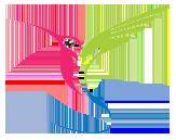slider-colibri